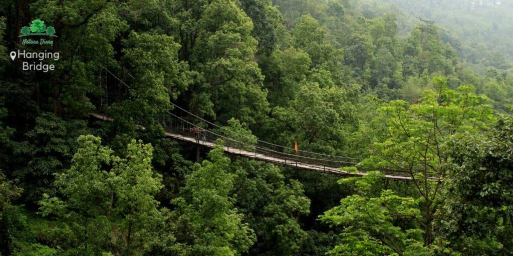 Hanging Bridge, Tinchuley