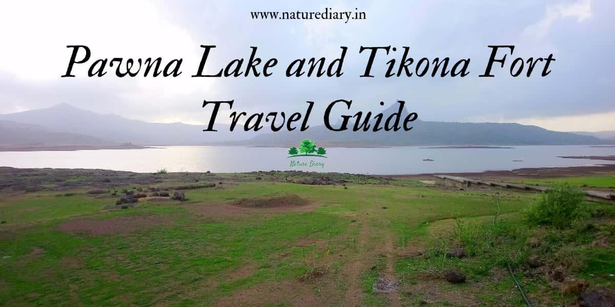 Pawna lake and Tikona fort trip