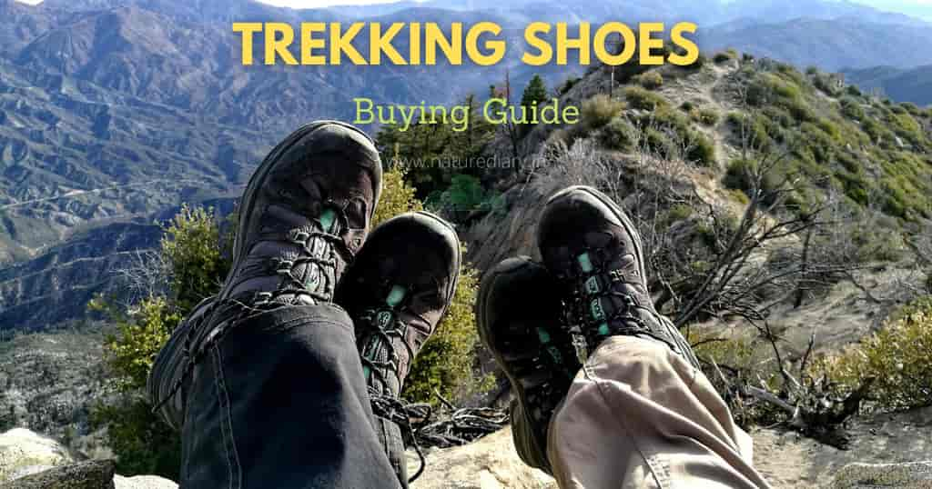 buying guide for best trekking shoes