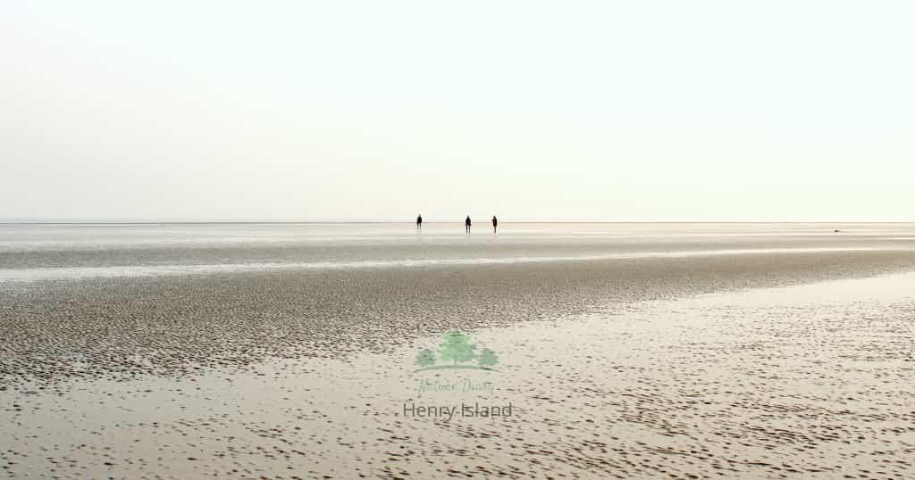 sea beach of henry island