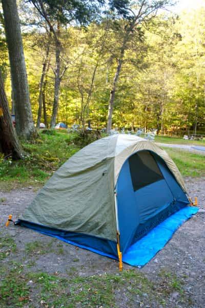 tent seasonality