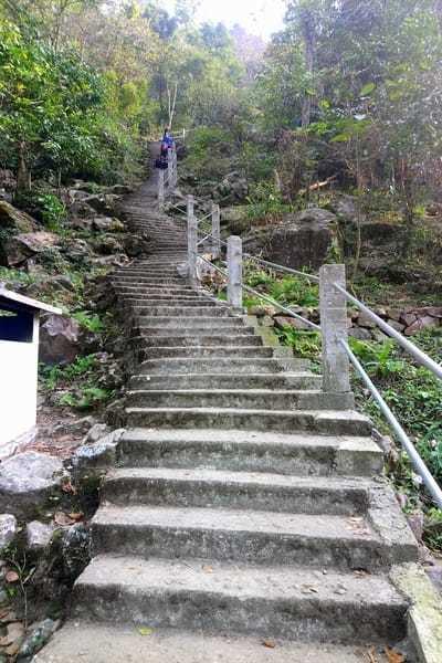 Staircase to double decker root bridge