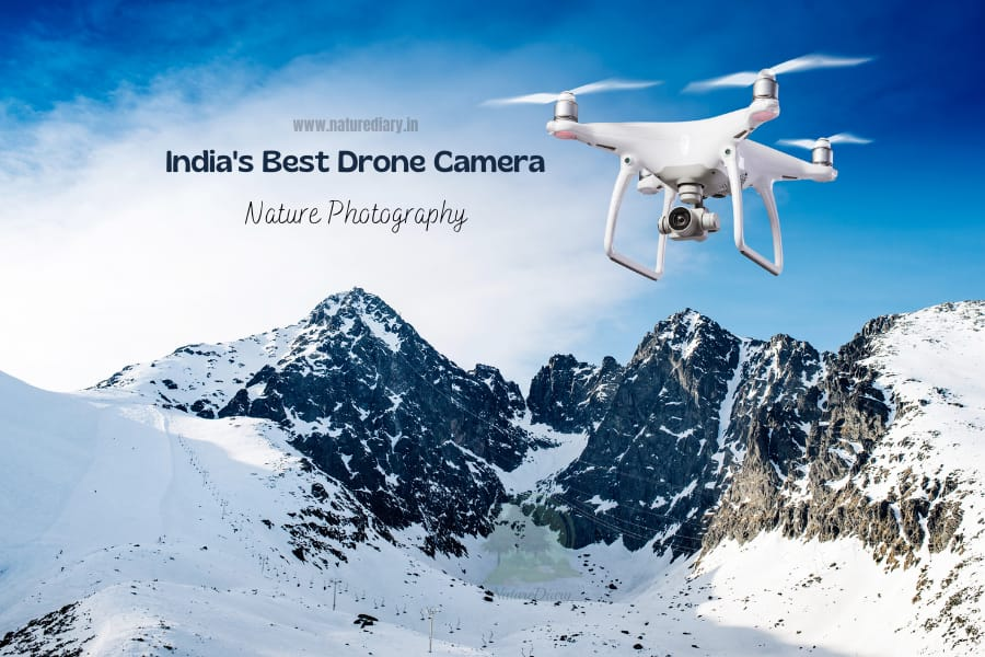 India's best drone camera for nature photography