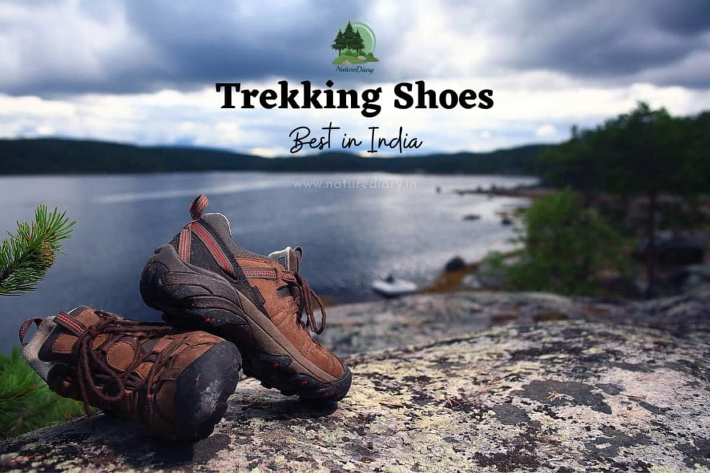best trekking shoe in India