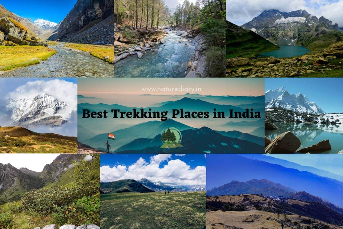 best trekking places in India