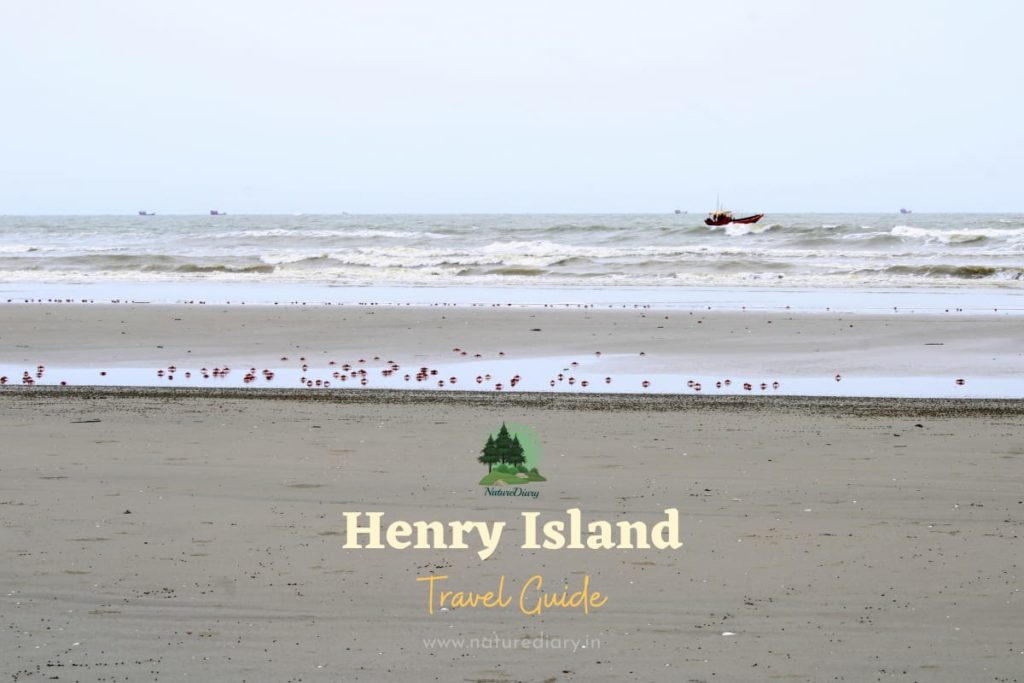 Henry Island Travel Guide with Best Resorts to Book