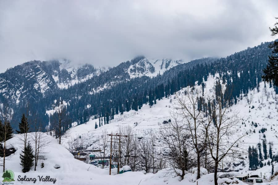 Solang Valley Camping, Himachal Pradesh