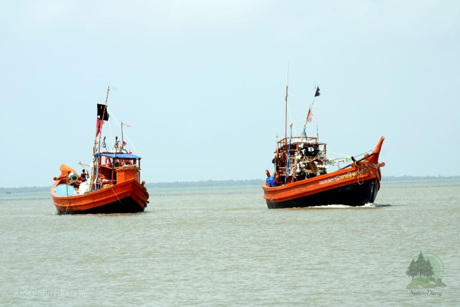 boat ride to Jambu dwip
